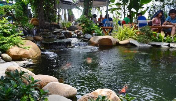 Hồ Cá Koi Cafe